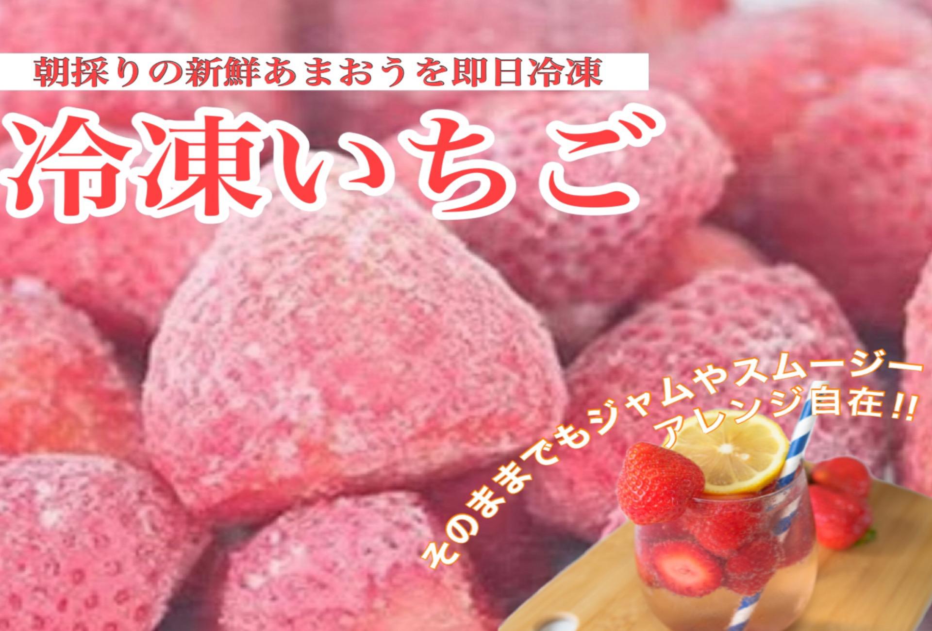 朝採りの新鮮あまおうを即日冷凍 冷凍いちご