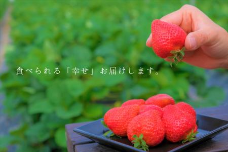 食べられる「幸せ」をお届けします。