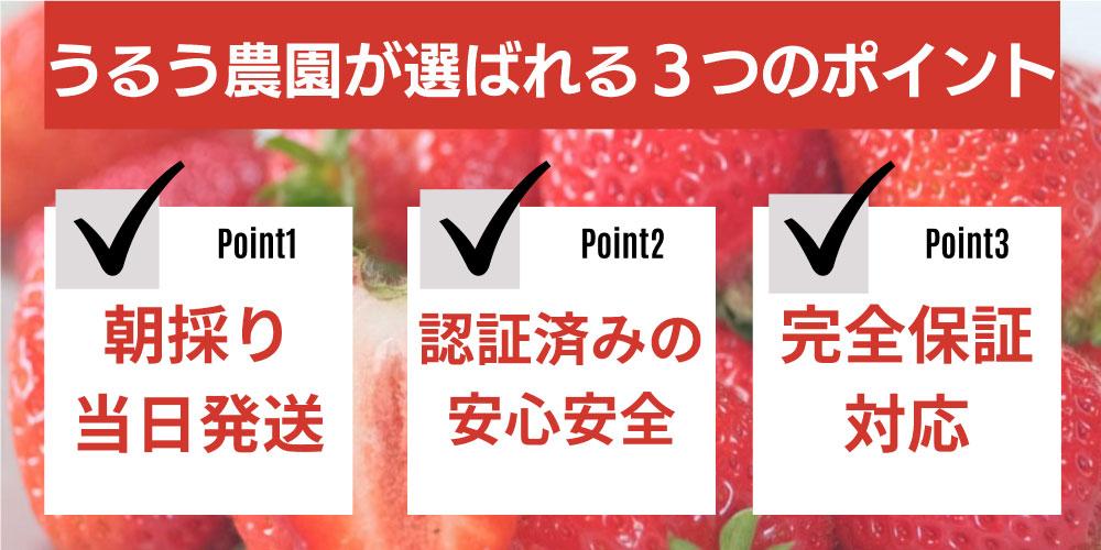 うるう農園が選ばれる3つのポイント